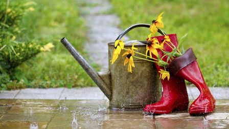 Your holiday may be finished, but your garden needn't be [PA Photo/thinkstockphotos]
