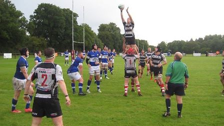 Harpenden claim a line-out on their way to victory over Hemel Hempstead.