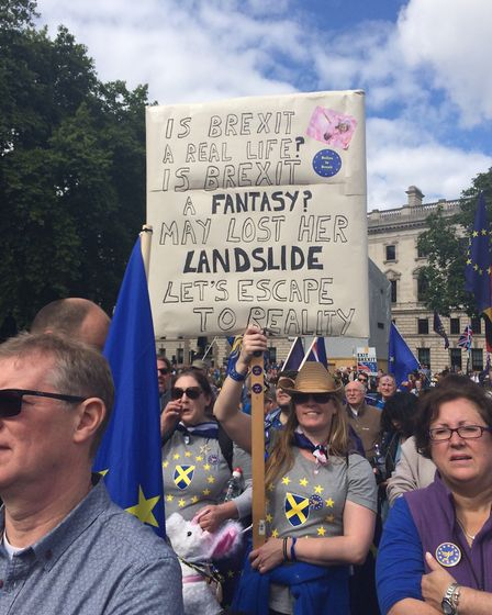 St Albans for Europe at the national Brexit march