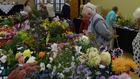 Last year's Fowlmere and Thriplow Gardening Club show.