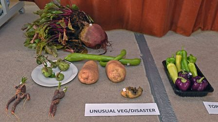 Some of the produce on display at Great Gidding Village Show.