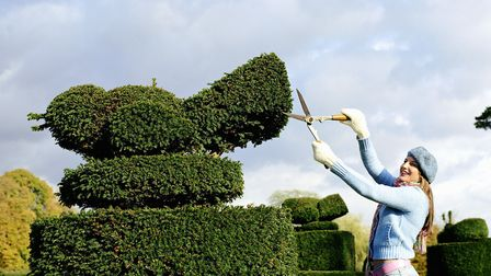 There are a few tricks of the topiary trade that make the process easier than it may appear [PA Phot