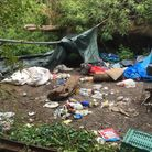 A group was found living in The Thicket, St Ives.
