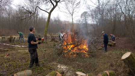 A working party at Brampton Wood