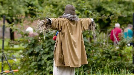 The annual scarecrow festival is held in August