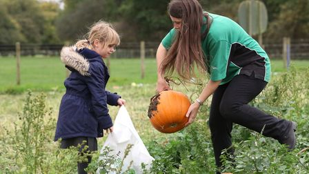 Activity farm assistant Miranda Dobson helps Anwen pick a pumpkin to carve at Willows farm. Picture: