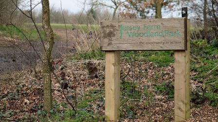 Jersey Farm Woodland Park is popular with joggers and dog-walkers