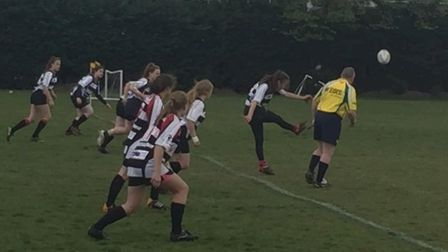 The ladies section at Harpenden Rugby Club is continuing to grow.