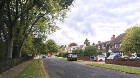 Marshal's Drive, St Albans - arguably the best street in town