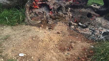The tree stump on fire with a firework shell nearby.
