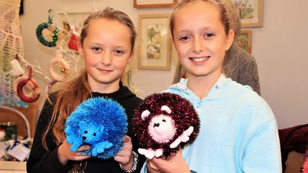 Jess and Emily Wainwright fell in love with these two knitted hedgehogs on the Nixnox stall. Clive P