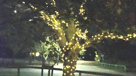 Brampton will have a Christmas lights display this year. Picture: BRAMPTON EVENTS GROUP