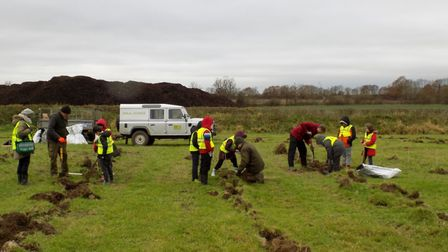 Students at St Bernadette's Primary School helped Hertfordshire County Council's Rural Estates Team.