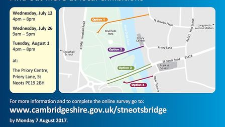 Four options for the new bridge were presented to councillors.