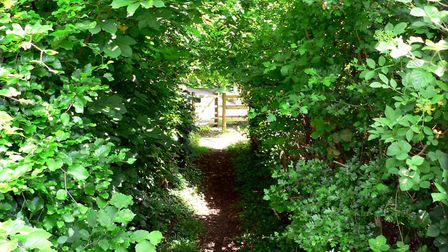 A footpath through picturesque Piccotts End