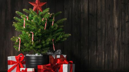 A small Christmas tree can be beautiful, too [Thinkstock/PA]