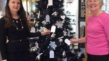 Suzanne Scarborough and Linda Piggott with the wishing tree. Picture: CONTRIBUTED