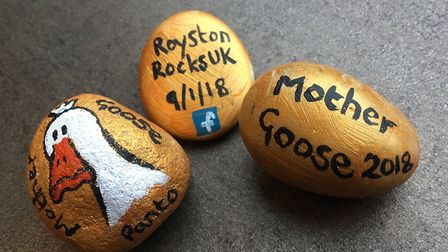 The CADS 'golden egg' rocks. Picture: CADS