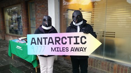 Penguin campaigners take to the streets for Greenpeace in St Albans.