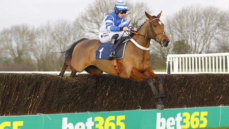 Odds-on shot Maestro Royal wins the opener at Huntingdon Racecourse under Jeremiah McGrath. Picture: