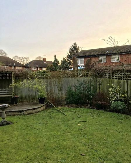 The back garden after the ask tree was felled. Picture: Susan Salter