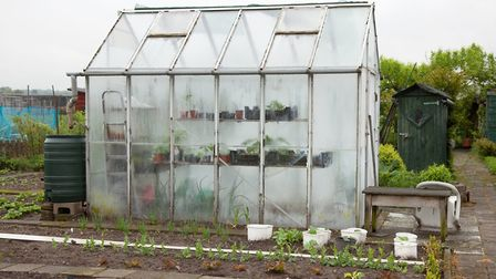 Now's the time to get your greenhouse in order