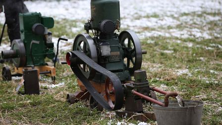 Mini steam engines on display at the Thriplow Daffodil Weekend. Picture: Danny Loo