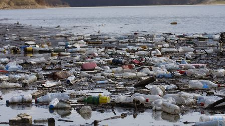 Sustainable St Albans is aiming to tackle plastic pollution which is killing more than one million s