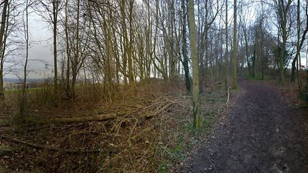 One panoramic view looking back towards Royston taken near end of the replacement land. Picture: Dav