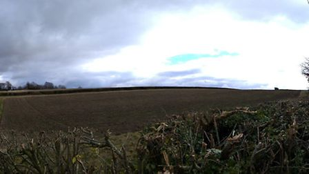The site of the proposed Gladman development next to Briary Lane. Picture: David Hatton