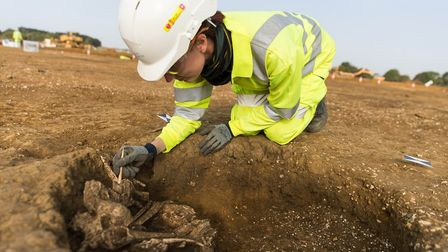 A sskeleton being excavated