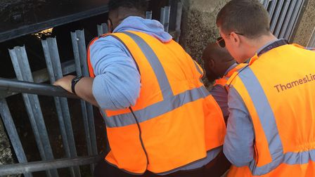 St Albans City Station staff rescuing the cat. Picture: Jo Daw