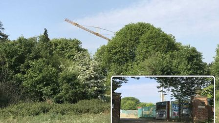 Intrigue: the sight of the crane towering above the hedges has been a local talking point for months