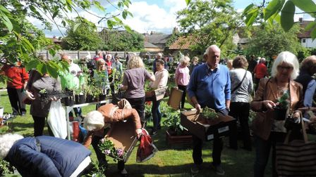 Markyate Plant Sale. Picture: Cathy Salmon at The Hospice of St Francis
