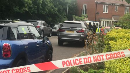 The incident in St Ives PICTURE: ARCHANT