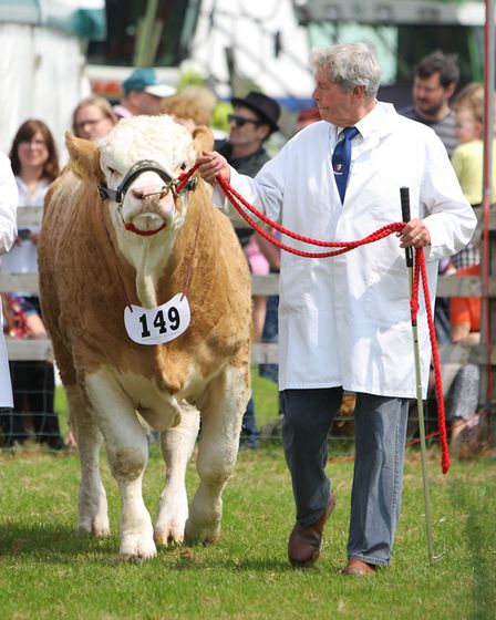 Herts County Show 2018 - The Grand Parade of Livestock.Picture: Karyn Haddon
