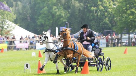 Herts County Show 2018 - The Hurry Scurry Event.Picture: Karyn Haddon