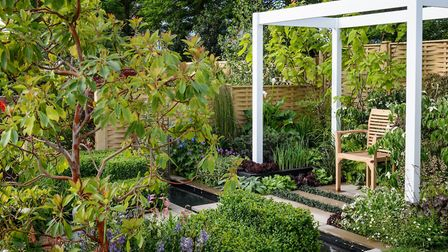 It's good to make use of green, says Diarmuid (Picture credit: Jason Ingram/BBC Gardeners' World Liv