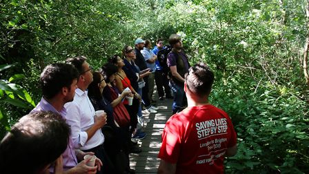 A team of foragers are shown the basics along the River Ver walk in the heart of St Albans by Richar
