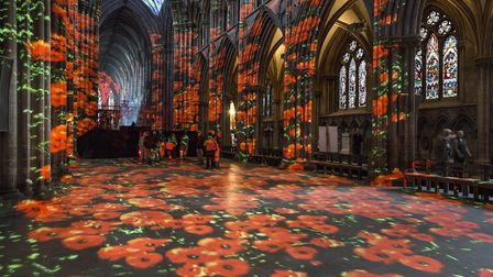Projection of poppies at St Albans Cathedral.