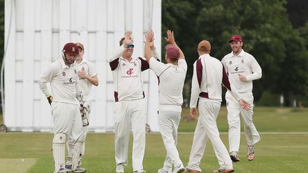 Harpenden celebrate a wicket in the match between Harpenden and Letchworth. Picture: DANNY LOO