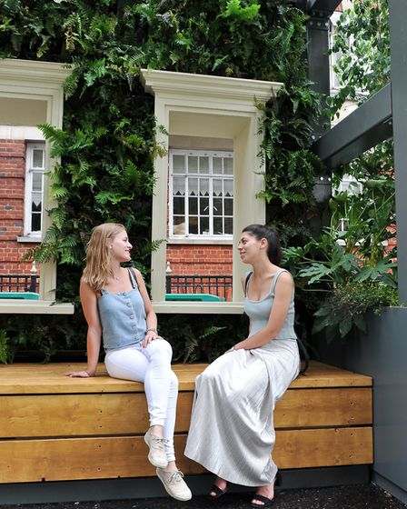 The Wild West End garden by Kate Gould. Picture: New West End Company