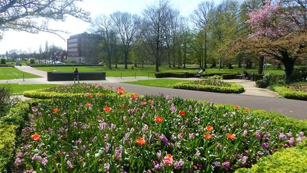 Blooms planted in Welwyn Garden City town centre