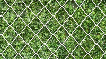 A wire mesh fence is another security option. Picture:Thinkstock/PA