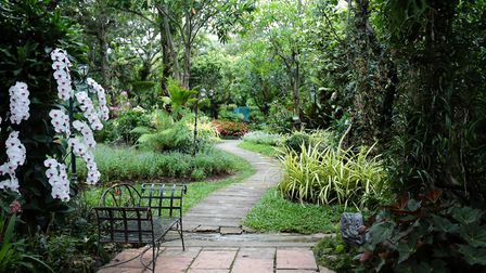 The great outdoors: a garden adds value to any home