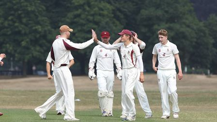 Harpenden celebrate Alex Chalker's wicket in the match between Harpenden and WGC. Picture: DANNY LOO