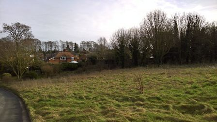 The conservators wanted to deregister common land near Briary Lane and sell it off for housing. Pict