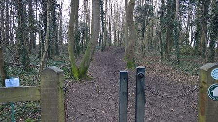 The entrance of the replacement land to the west of New Road in Therfield. Picture: David Hatton