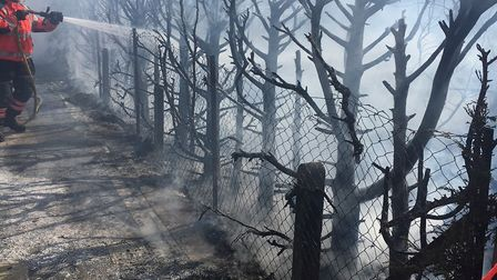 Firefighters tackle a burning hedge in St Neots