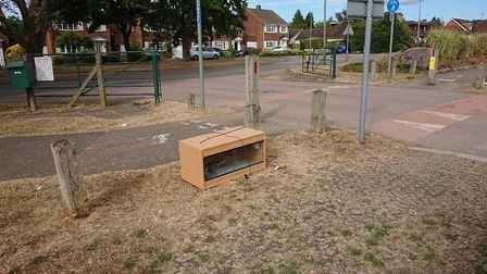 The vivarium in the car park in St Albans. Picture: RSPCA